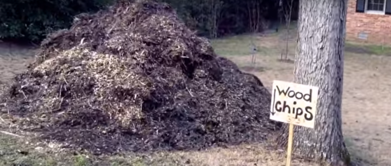 Where To Get Wood Chips ~ How to get free wood chips for your back eden garden